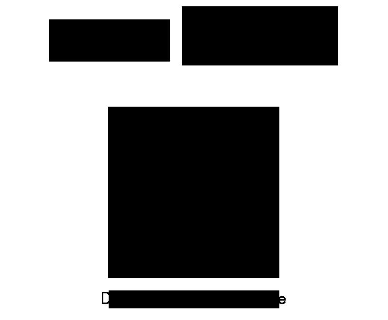 Elaboration du logo - De Falguiere Photographie